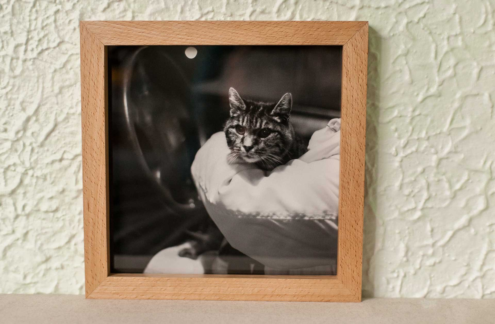 Picture Frame by btyreman