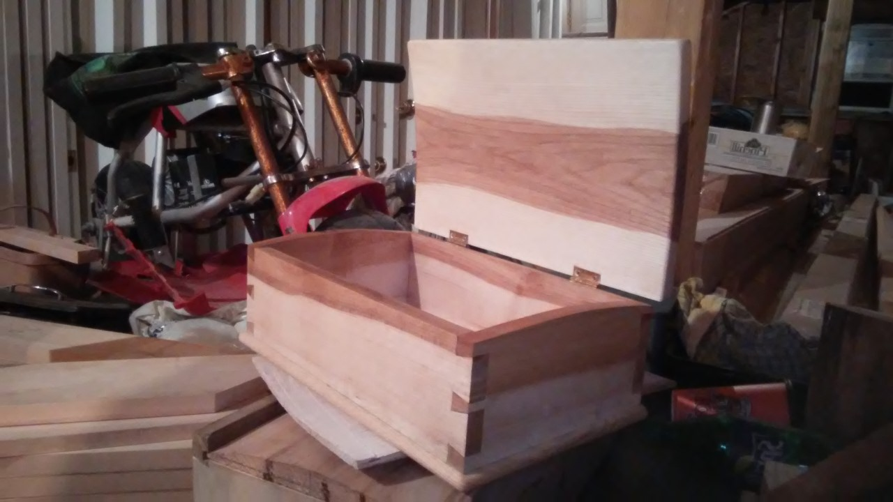 Dovetail Box by deon mackenzie