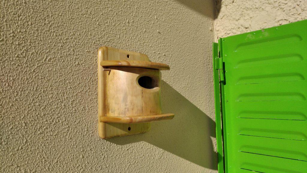 Bird House by grover