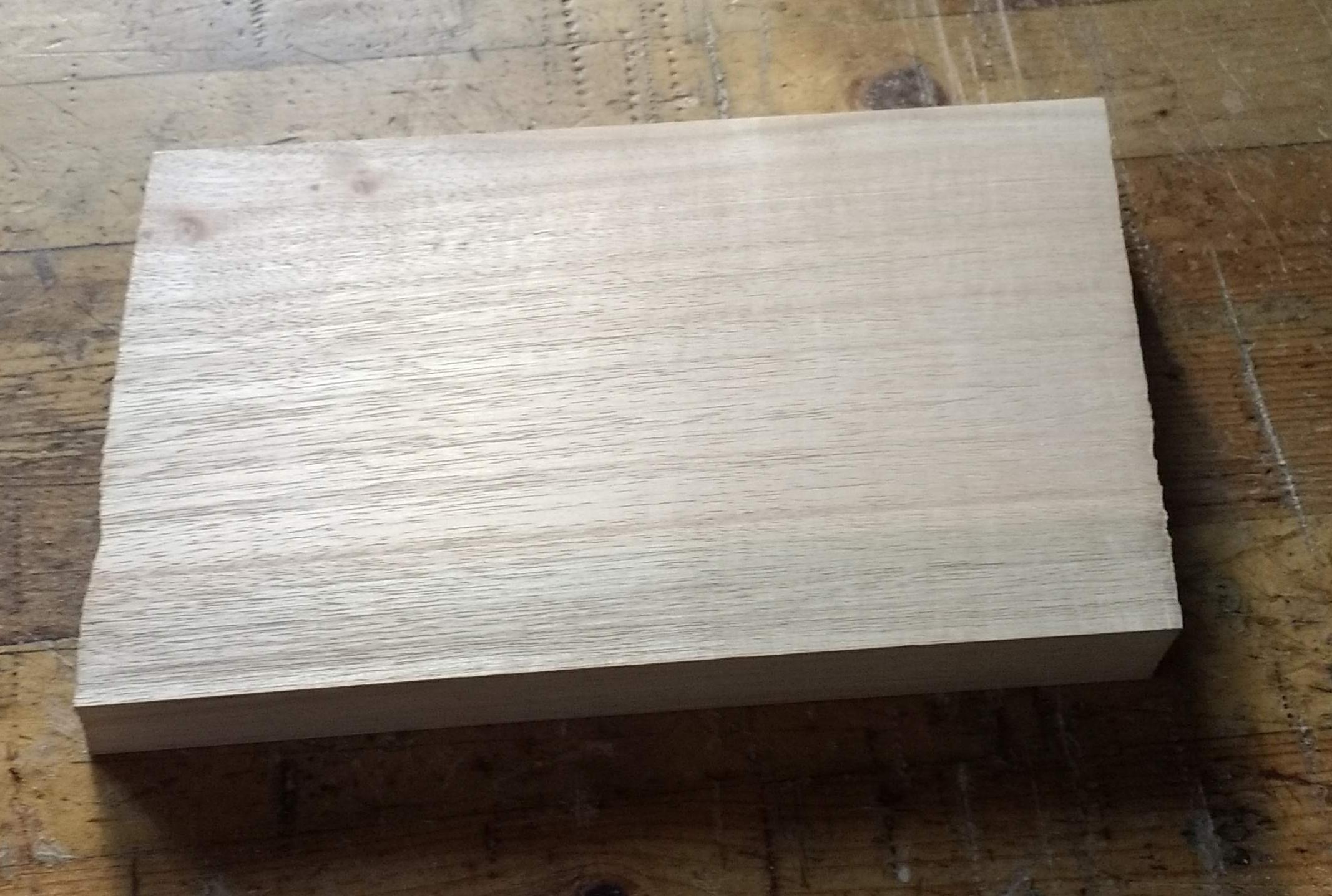 EucalyptusBlank1