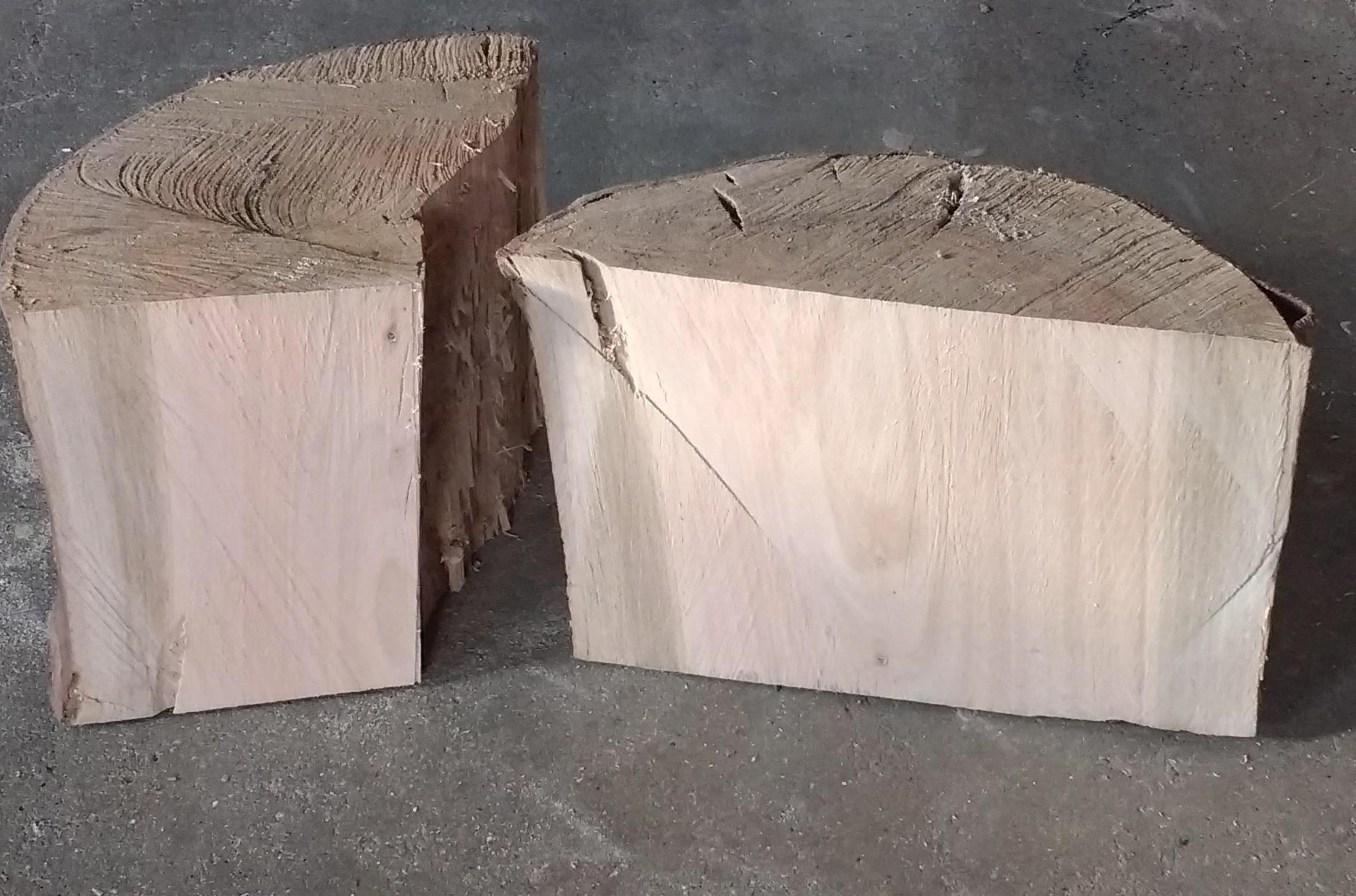 EucalyptusLog