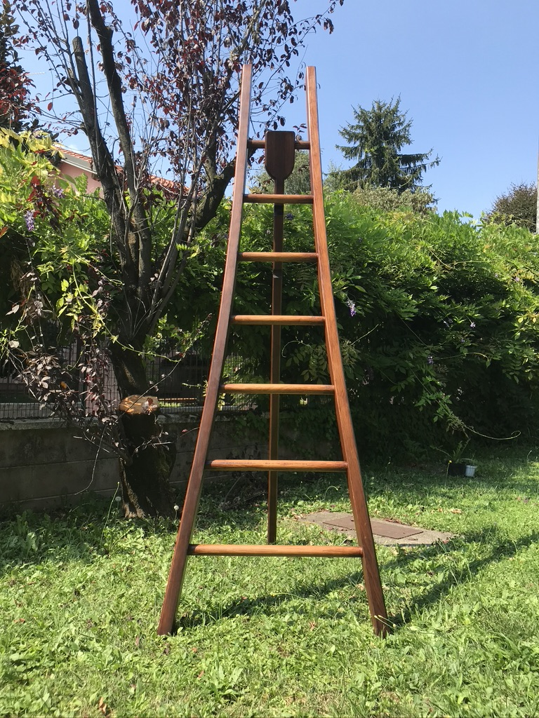 Olive Harvest Curved Ladder by Paolo Bottura